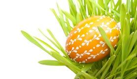 Huevo de Pascua en hierba Imagen de archivo