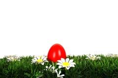 Huevo de Pascua en hierba Foto de archivo