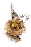 Huevo de Pascua en jerarquía con el pájaro Fotografía de archivo
