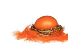 Huevo de Pascua en la jerarquía con las plumas aisladas en el fondo blanco Fotografía de archivo
