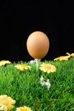 Huevo de Pascua en te de golf Fotos de archivo