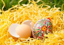 Huevo de Pascua en una hierba Foto de archivo libre de regalías