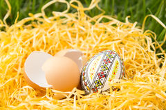 Huevo de Pascua en una hierba Imagen de archivo libre de regalías