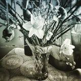 Huevo de Pascua Mirada artística en estilo del duotone fotografía de archivo libre de regalías