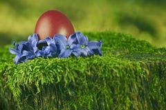 Huevo de Pascua rojo hermoso Imágenes de archivo libres de regalías