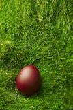 Huevo de Pascua rojo hermoso Fotografía de archivo libre de regalías