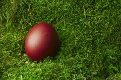 Huevo de Pascua rojo hermoso Imagenes de archivo