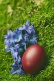 Huevo de Pascua rojo hermoso Fotos de archivo