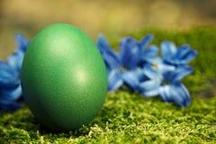 Huevo de Pascua verde hermoso Fotos de archivo libres de regalías