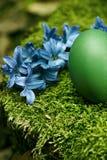Huevo de Pascua verde hermoso Foto de archivo libre de regalías