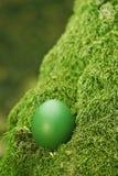 Huevo de Pascua verde hermoso Imagenes de archivo