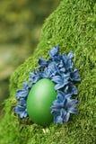 Huevo de Pascua verde hermoso Imagen de archivo libre de regalías