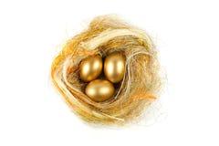 Huevo del oro fotos de archivo