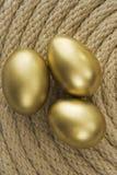 Huevo del oro en embrague Imagen de archivo libre de regalías