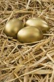 Huevo del oro en embrague Imagenes de archivo