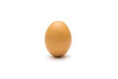 Huevo del pollo Imagen de archivo libre de regalías
