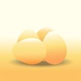Huevo del pollo Imágenes de archivo libres de regalías