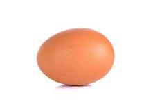 Huevo del pollo aislado en un fondo blanco Foto de archivo