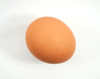Huevo del pollo de Brown Fotos de archivo