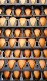 Huevo del pollo en huevos plásticos del panel imagenes de archivo