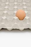 Huevo en bandeja Imagenes de archivo