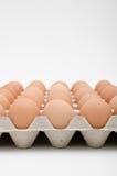 Huevo en bandeja Imagen de archivo libre de regalías