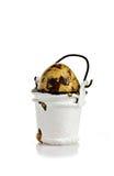 Huevo en cubo Imagen de archivo libre de regalías