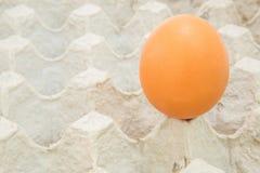 Huevo en el cartón II del huevo imagen de archivo