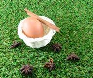 Huevo en hierba verde Fotos de archivo libres de regalías