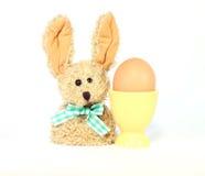 Huevo en huevera y el conejito de pascua Foto de archivo