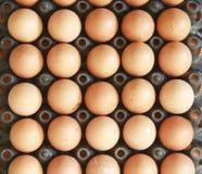 Huevo en las plataformas plásticas negras para la venta Foto de archivo