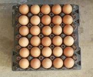 Huevo en las plataformas plásticas negras para la venta Foto de archivo libre de regalías
