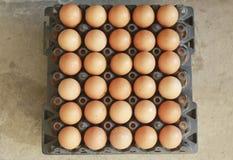 Huevo en las plataformas plásticas negras para la venta Imagen de archivo