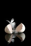 Huevo en negro Fotos de archivo libres de regalías