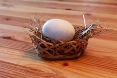 Huevo en una cesta Imágenes de archivo libres de regalías