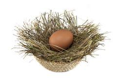 Huevo en una jerarquía Foto de archivo