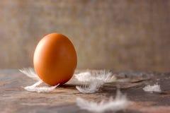 Huevo en una teja de piedra con las plumas Imagen de archivo