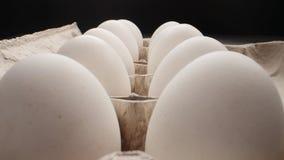 Huevo fresco crudo en el paquete en whitetable, lanzamiento de la diapositiva almacen de video