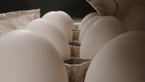 Huevo fresco crudo en el paquete en whitetable, lanzamiento de la diapositiva almacen de metraje de vídeo