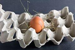 Huevo fresco en rectángulo Foto de archivo libre de regalías