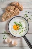 Huevo frito con las cebolletas Foto de archivo