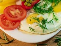 Huevo frito con verdes, especias, condimentos Imágenes de archivo libres de regalías