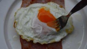 Huevo frito en el jamón con la bifurcación que apuñala fluir cremoso de la yema de huevo metrajes