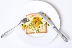 Huevo frito en el pan de la tostada Imagen de archivo libre de regalías