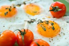 Huevo frito, especias y tomates de cereza Imagen de archivo