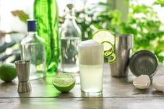 Huevo Gin Fizz Cocktail fotografía de archivo libre de regalías