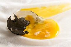 Huevo oscuro quebrado fotografía de archivo libre de regalías