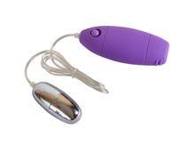 Huevo púrpura del juguete del sexo con el panel de control del vibración y  Imagen de archivo