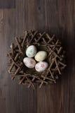 Huevo, pascua, jerarquía, fondo del pájaro Foto de archivo