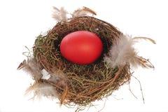 Huevo rojo en la jerarquía Fotografía de archivo